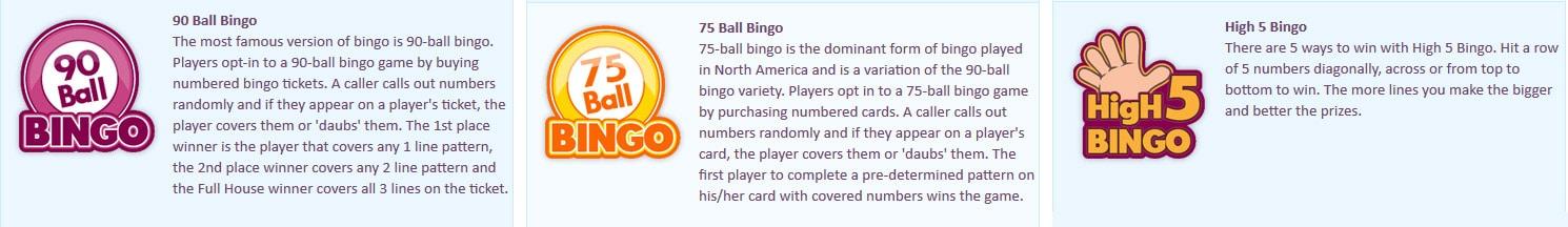 Loadsa Bingo Games