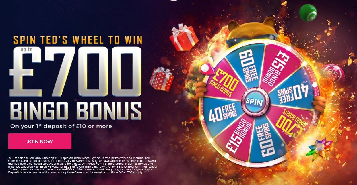 ted bingo welcome bonus